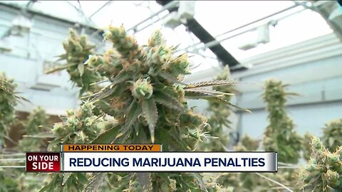 City council to discuss lowering penalty for marijuana today