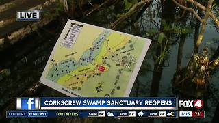 Corkscrew Swamp Sanctuary welcomes volunteers - Video