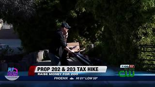 Breakdown of what Props 202 and 203 would cost you - Video