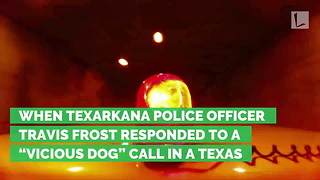 Cops Respond To Call About 'Vicious Dog' Only To Capture Lovable Photos Instead