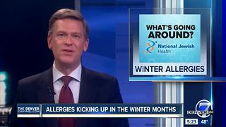 Winter Allergies - Video