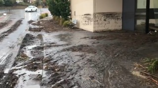 Clean-Up Begins After Wild Weather Slams Hobart - Video