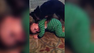 Puppy Gives Baby A Bath - Video