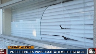Attempted break-in worries mother of special needs child - Video