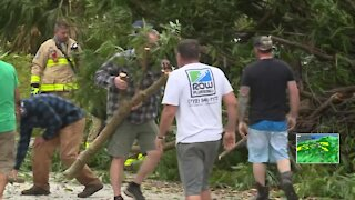 Storms knock down trees, block a street in Hobe Sound