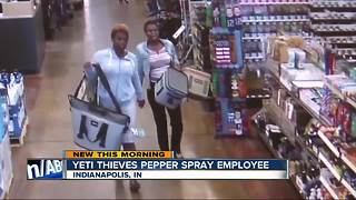Women caught on camera stealing expensive coolers - Video