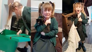 Girl has the cutest reaction to a purr-fect birthday surprise  - Video