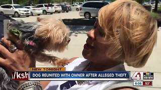 Overland Park woman reunited with stolen dog - Video
