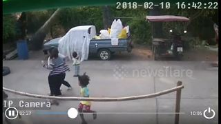 Two-year-old boy narrowly avoids being crushed by palm tree
