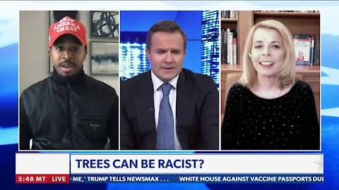 Terrence Williams Joins Greg Kelly to Discuss Political Correctness and BLM