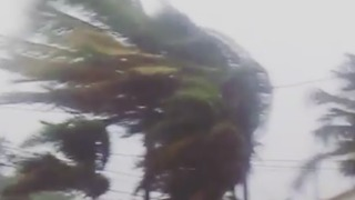 Strong Winds Lash Broward County as Irma Makes Landfall - Video