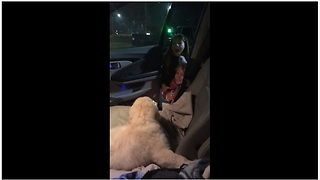 Dad surprises daughters with Christmas puppy - Video