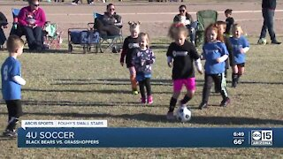 Fouhy's Small Stars: 4U soccer Black Bears vs. Grasshoppers