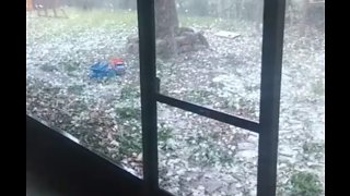 Large Hail Bounces Around Backyard in Florida