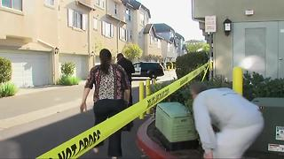Double murder suicide in South Bay - Video
