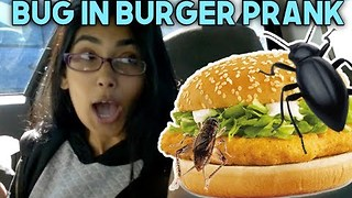Guy Pranks Girlfriend With 'Edible' Bugs in Burger - Video