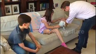 Emotional Kids Reunited With Dog After Being Three Years Apart - Video