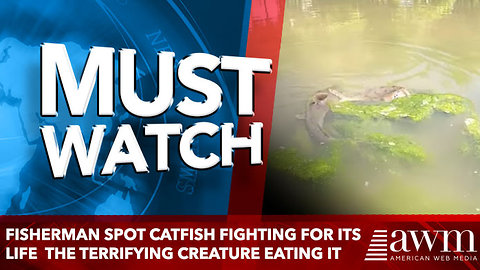 Fisherman Spot Catfish Fighting For Its Life See The Terrifying Creature Eating It