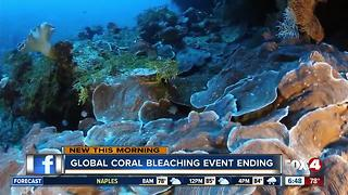 3-year global coral bleaching event over - Video