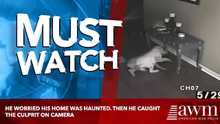 He Worried His Home Was Haunted. Then He Caught The Culprit On Camera - Video