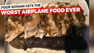 Woman Is Handed Her Airplane Meal, Immediately Takes Photo To Have Proof Of Issue With It - Video