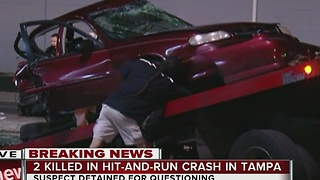 2 dead, 1 arrested in hit and run crash in Tampa - Video