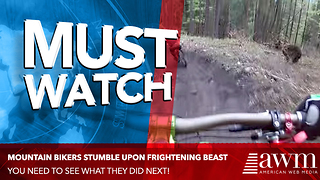 Here's The Terrifying Video Of A Mountain Bike Trail News Stations Have Been Talking About - Video