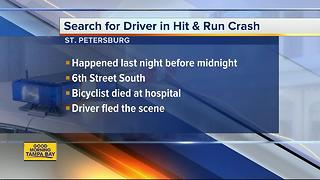 Police search for hit-and-run driver who killed bicyclist in St. Pete - Video