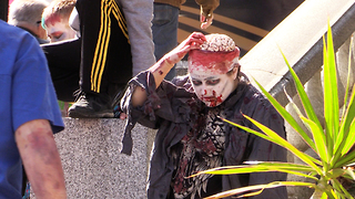 Zombie picks brain and eats it at Halifax Zombie Walk - Video