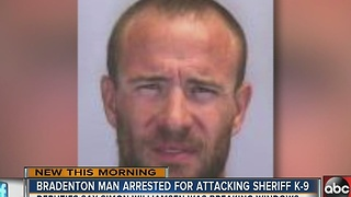 Bradenton man arrested for attacking sheriff K-9 - Video