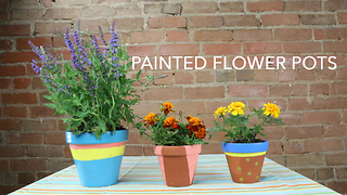 How to make your own DIY painted flower pots - Video