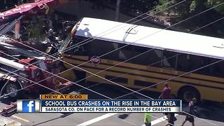 School bus crashes on the rise in the Tampa Bay area - Video