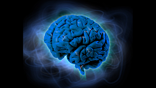 10 Amazing Facts About The Brain - Video