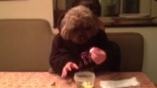 Dog With Human Hands Eats Veggies