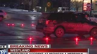 Police investigating pedestrian accident in Westland - Video