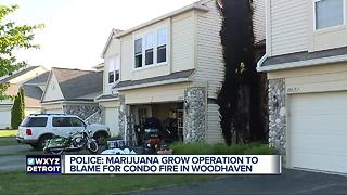 Woodhaven police find grow operation after fire - Video
