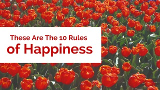 These Are The 10  Rules of Happiness - Video