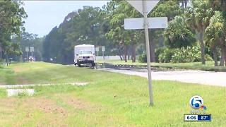 Man dies in head-on collision in Martin County - Video