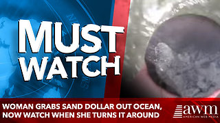 Woman Grabs Sand Dollar Out Ocean, Now Watch When She Turns It Around - Video