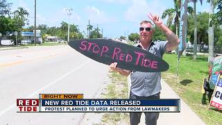 Red tide rally planned from St. Pete to Sarasota - Video