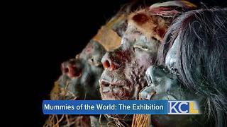 Mummies of the World at Union Station - Video