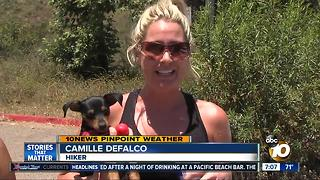 Staying safe in the heat - Video