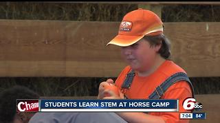 Russiaville horse camp teaches students STEM skills