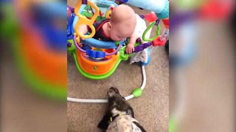 Dog Can't Stop Giving Baby Boy Kisses