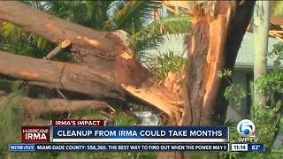 Irma cleanup could take months, how to do your part - Video