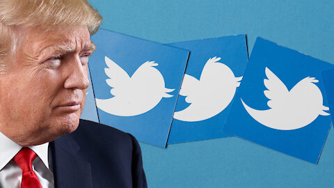 Twitter Will Not Restore Trump's Account Even If Wins Again, Project Veritas Goes After Facebook