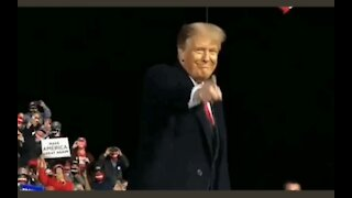 How could You NOT Love President Trump - VOTE!
