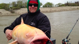 Man Catches Rare Albino Catfish in Canada