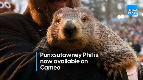 Punxsutawney Phil on Cameo!