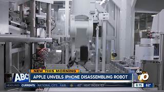 Apple Robot Daisy